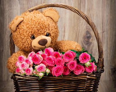 teddy-with-nice-roses-pictures