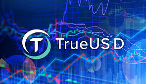 New Partnership Supports TrueUSD Traders to Audit The Coin's Backing Assets