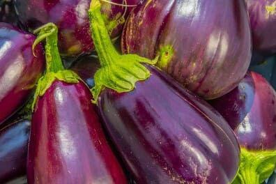 13 Manfaat Sehat Terong Ungu Untuk Jantung Dan Anemia