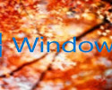 Tải Windows 10 Autumn Full Soft Full Driver 8 2017