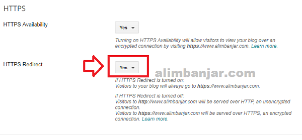 Cara Setting HTTP ke SSL HTTPS Custom Domain Blogger