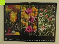 Juni: Laurent Pinsard 2016 - Triplets Posterkalender Naturkalender quer - 64 x 48 cm