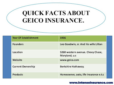 Does Geico Have Life Insurance