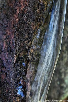 Photo Graphie glacée, Fontainebleau