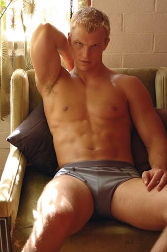 David M Gay