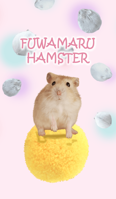 Fluffy Hamsters