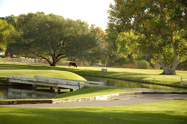 Tubac Golf Resort Restaurant Menu