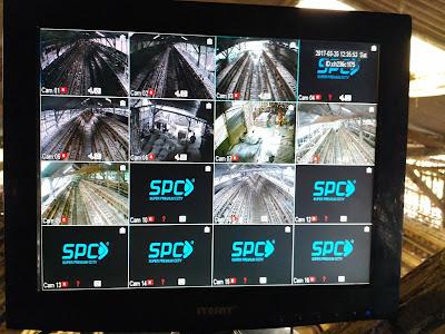 Hasil Rekaman Camera SPC