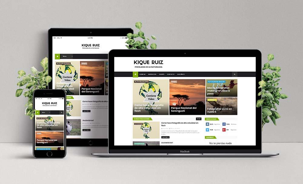 Diseño Web de Pinceladas de la Naturaleza