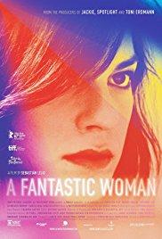 Watch A Fantastic Woman Online Free 2017 Putlocker