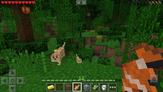 Minecraft Pocket Edition Mod Apk  v1.2.13.6 (Unlock Premium Skins)