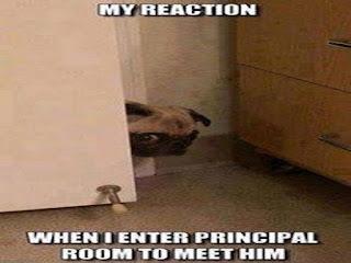 My Reaction When I enter Principal Room