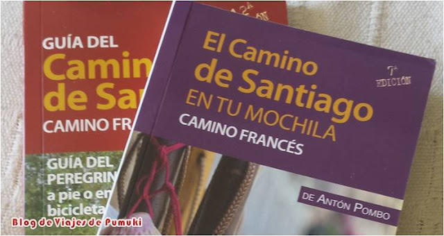 Guías del Camino de Santiago. Organizando el Camino de Santiago con niños