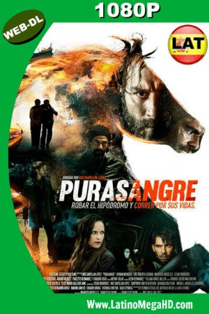 Purasangre (2017) Latino HD WEB-DL 1080P ()