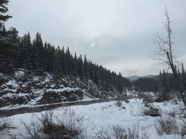 Paddy's Flat Interpretive Trail River View