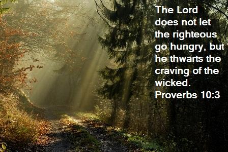 Proverbs 10:3 ~ Planet Weidknecht