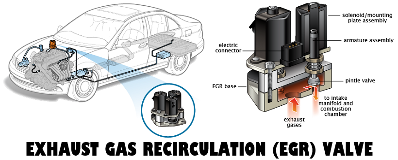 Exhaust Gas Recirculation location