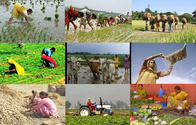 महिला किसान योजना Women's farm scheme