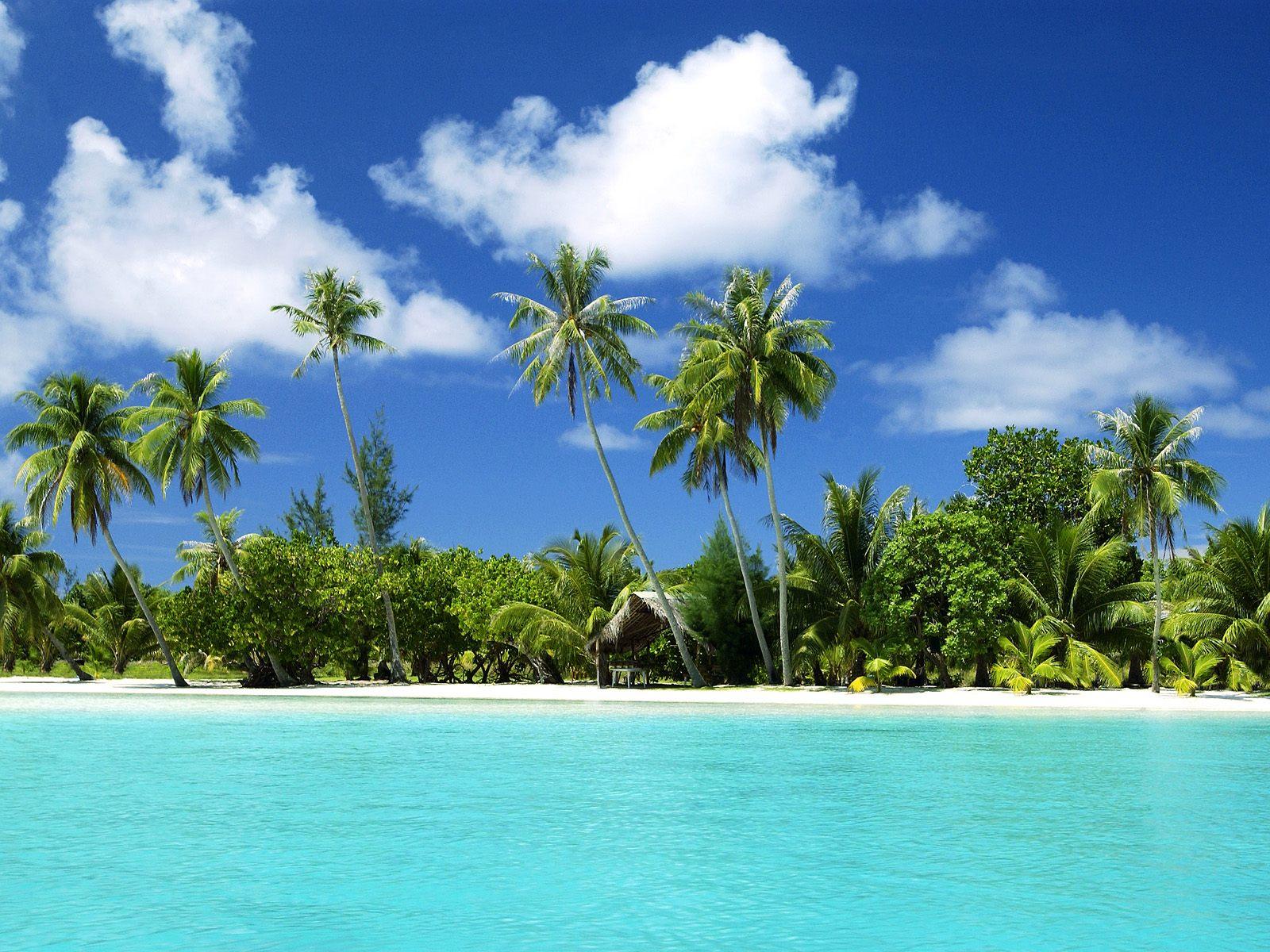 Tourism: Tropical Beaches