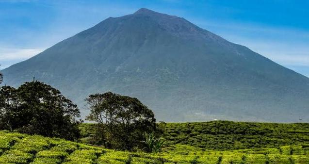 Gunung Kerinci Tinggi (3.805 m )