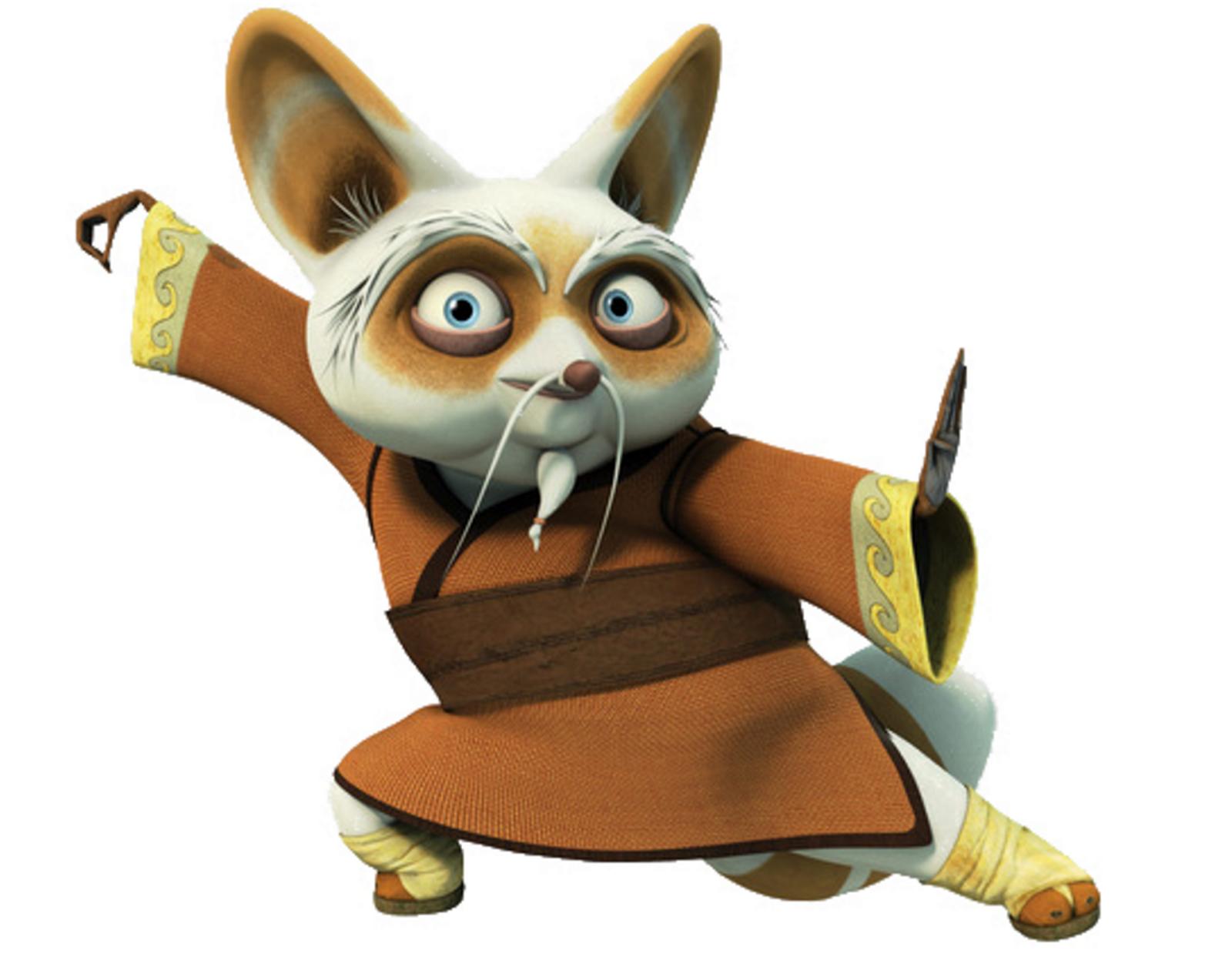 Master Shifu Newkungfupanda3