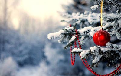 Pics of Christmas