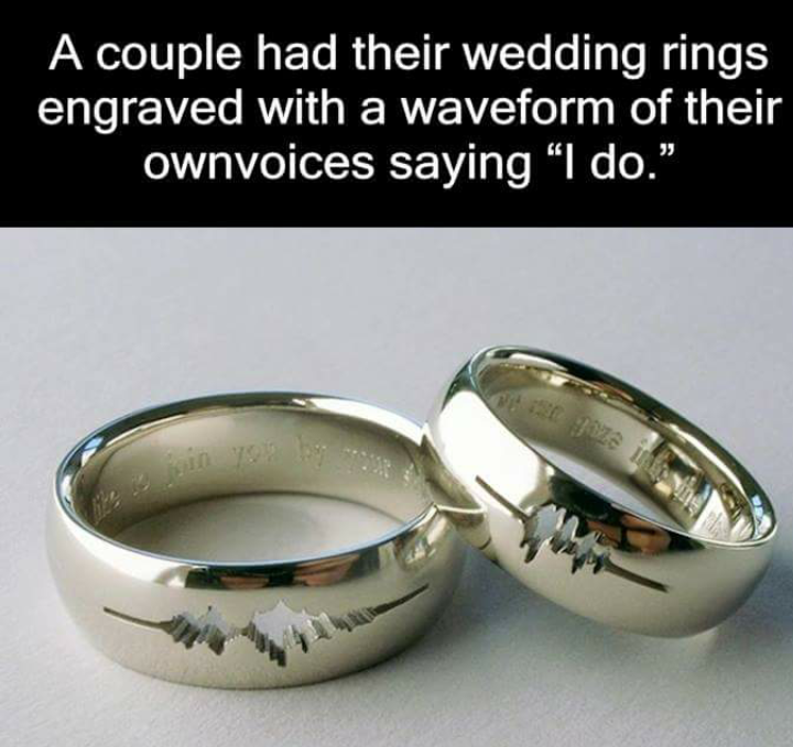 Horse Wedding Rings 97 Simple weirdfacts cullage