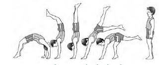 Latihan handstand