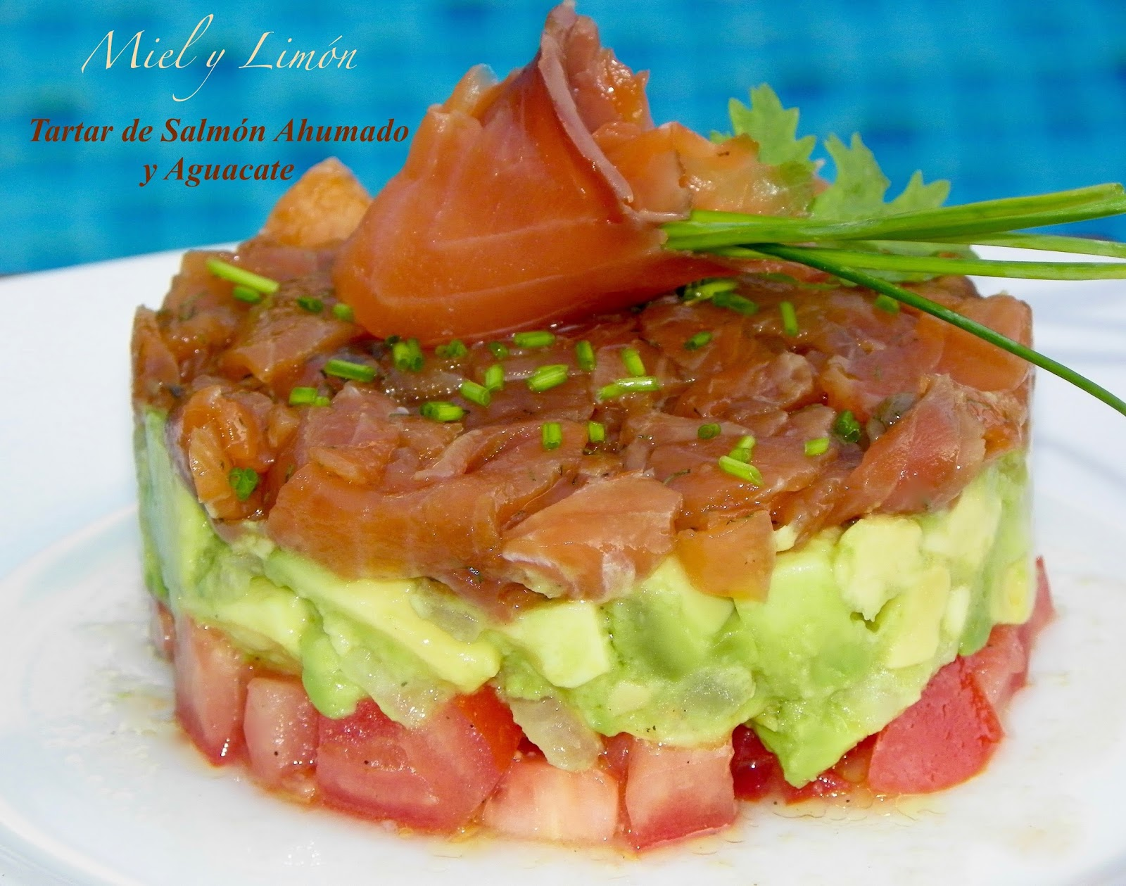Tartar de salm n ahumado y aguacate - Ensalada con salmon y aguacate ...