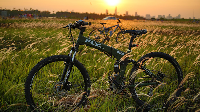 Wallpaper: Bicycle on Field in Sunset