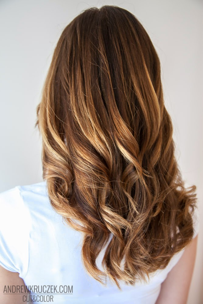 Andrzej Kruczek Cut And Color Honey Highlights On Brown