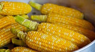 manfaat-jagung-manis-rebus-untuk-ibu-hamil