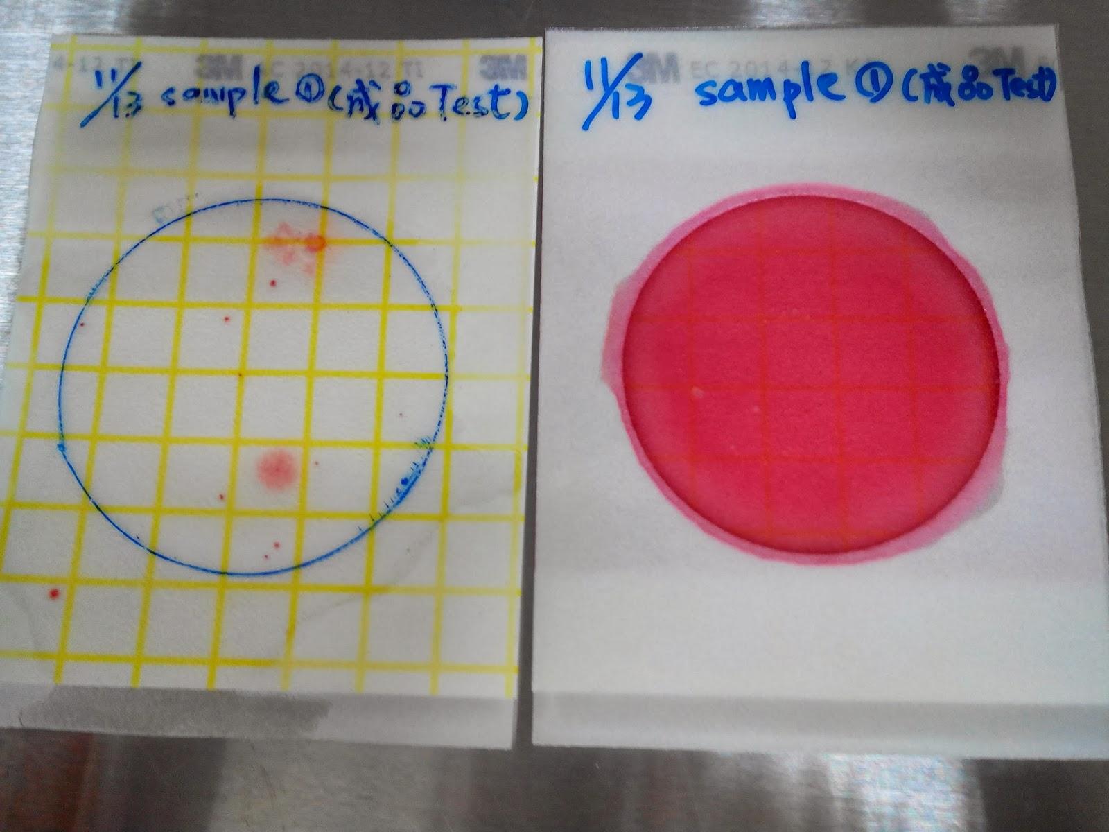光仁中學校園廚房: 1021113成品自主檢測(總生菌數,大腸桿菌,大腸桿菌群)