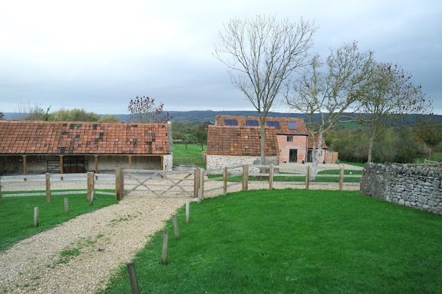 Double House Farm, Wells, Somerset - Garden