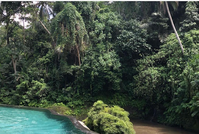 Examen: Four Seasons Resort Sayan, Bali (tuiles en Pierre Sukabumi Verte, Pierre Lave Bali, Tuiles Blanches)