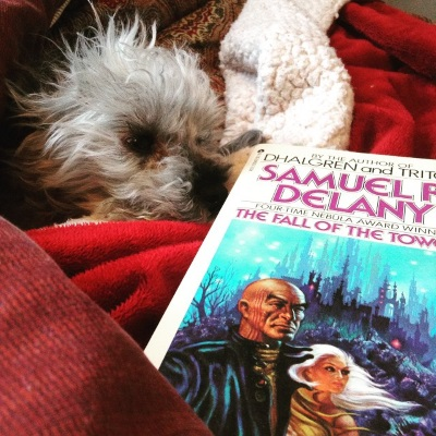 Murchie lays in his customary blanket nest with only his head and one paw poking out. His right ear is flipped over. In front of him is a paperback copy of The Fall of the Towers. Its cover features two brown-skinned people, one old and bald and the other young with flowing white hair, standing before a towered city that appears to be underwater.