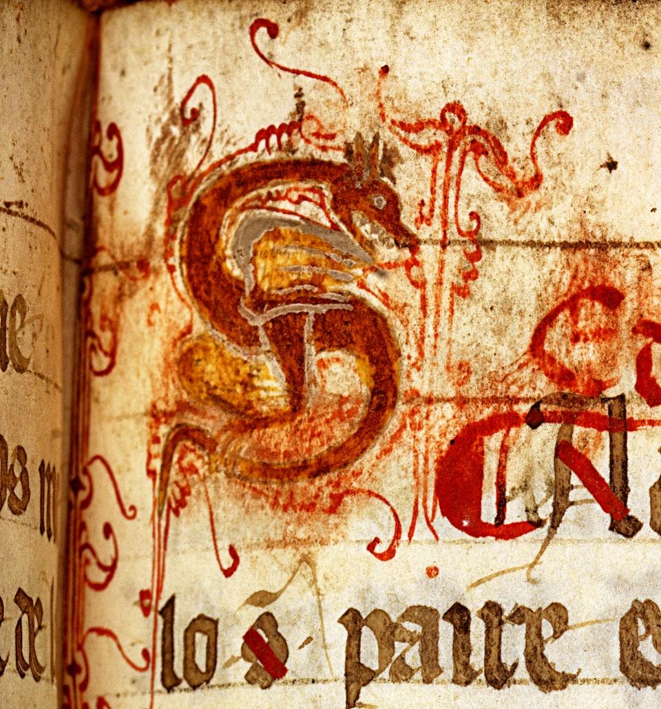 les compagnons de paratge: Cathares, un patrimoine écrit