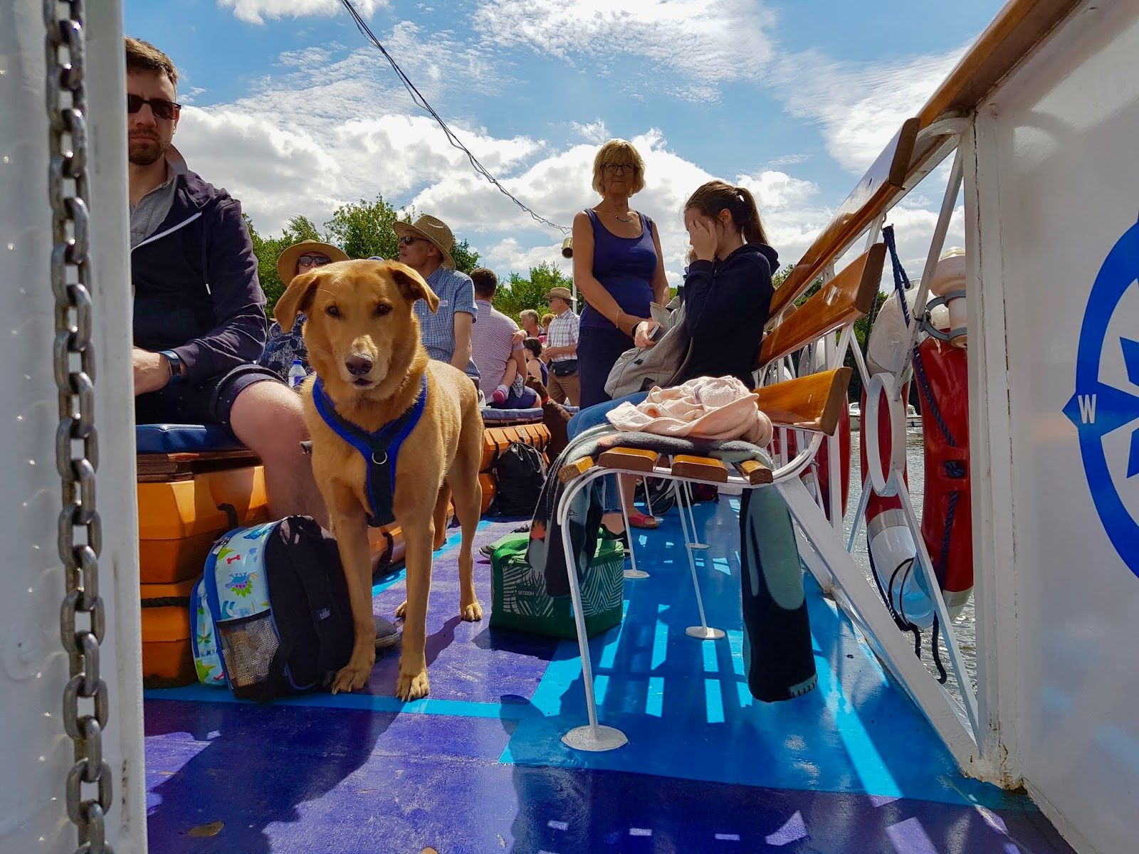 deck of the cruise boat with passengers and dog