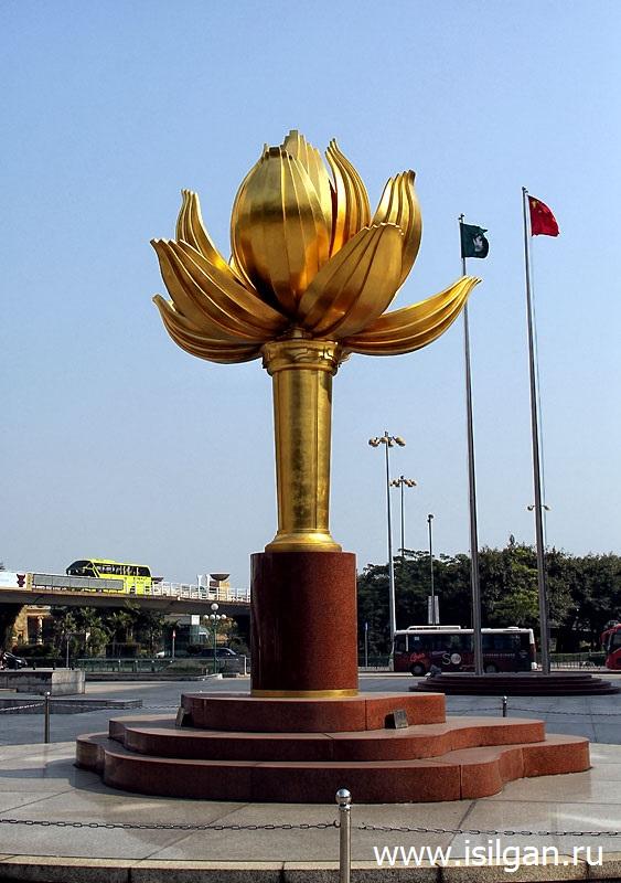 Золотой цветок лотоса в полном цвете. Город Макао. Китай