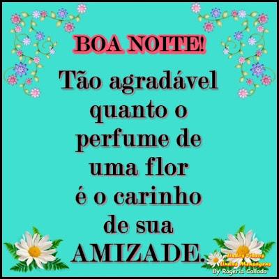 Tão agradável quanto o  perfume de uma flor é o carinho de sua  AMIZADE.