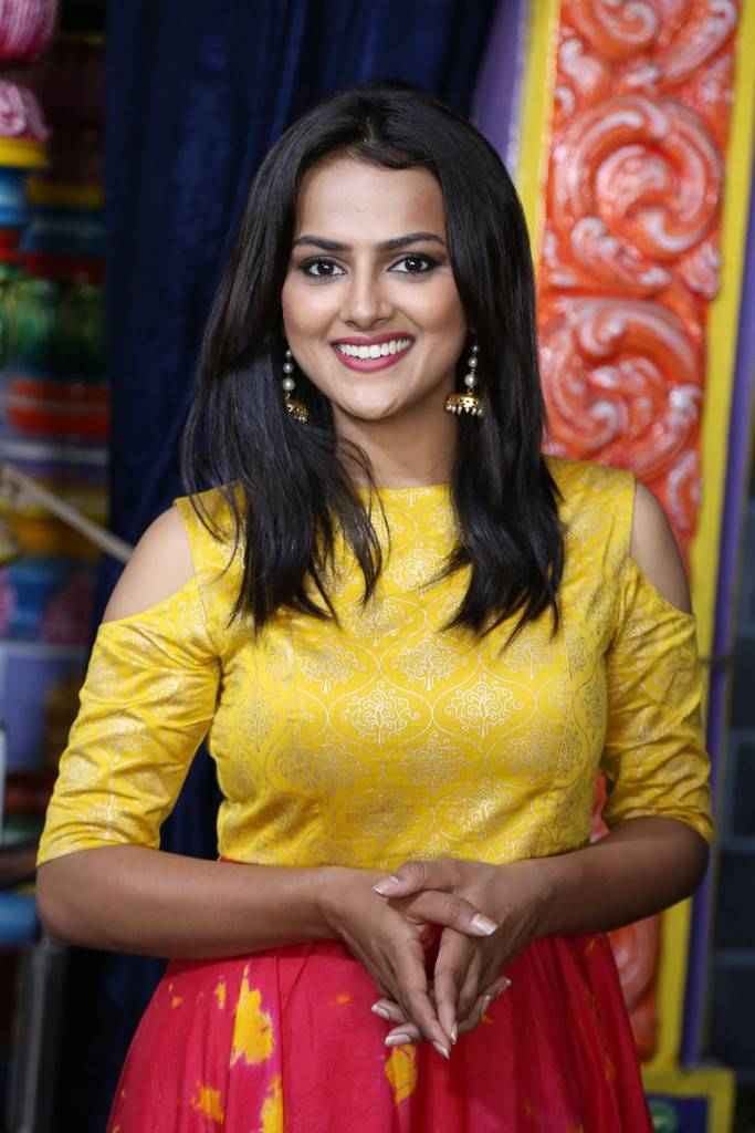 Shraddha Srinath At US Productions New Movie Launch Gallery