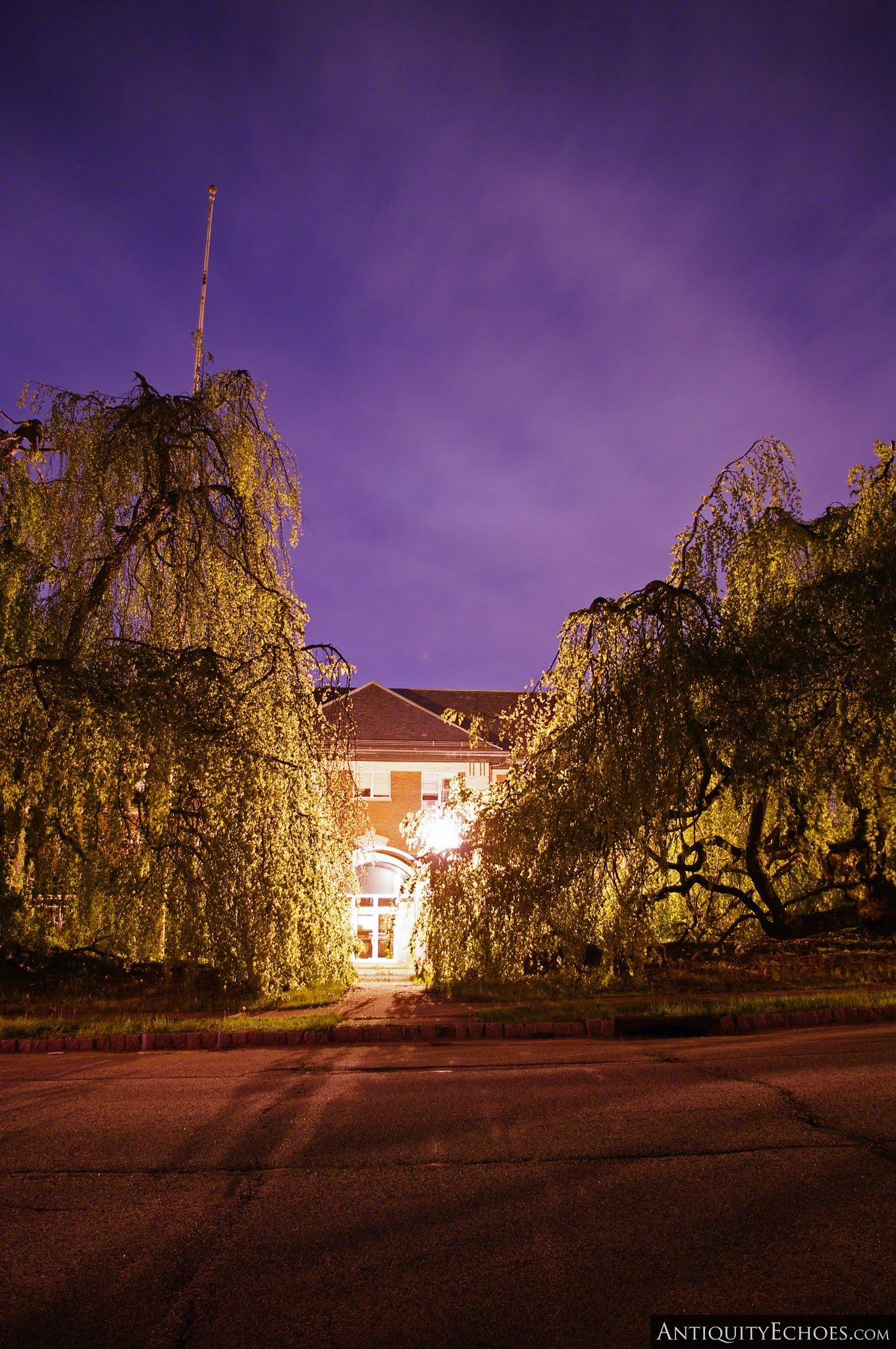 Overbrook Asylum - Willows and Streetlamps