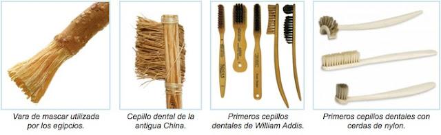Resultado de imagen para evolucion del cepillo de dientes