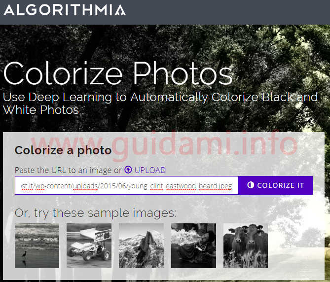 Sito web algorithmia colorize photos