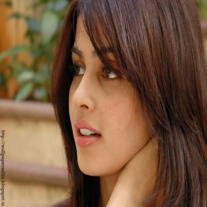 genelia d souza in bikini wallpapers