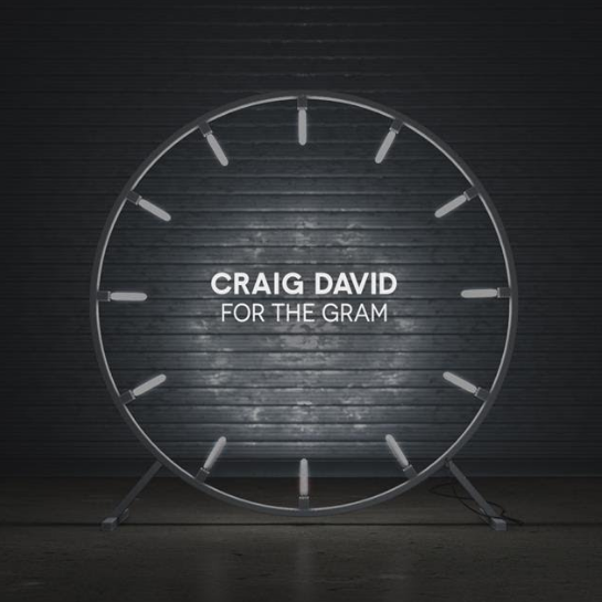 Craig David - For the Gram - Single