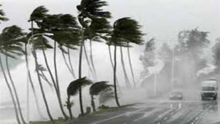 الرياح القوية تقتلع الأشجار وتحطم السيارات في القاهرة