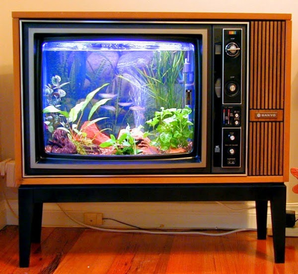http://www.funmag.org/home-decor/unique-aquariums-27-photos/