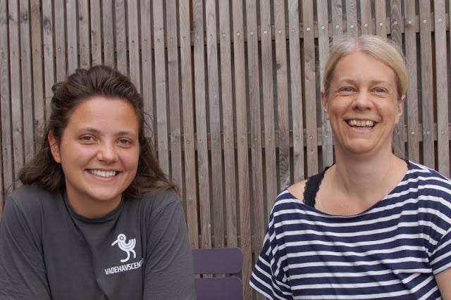Im Watt in Dänemark: Unser Besuch im Vadehavscentret samt Wattenmeer-Tour. Wir trafen Betty, die im Wattenmeerzentrum ein freiwilliges ökologisches Jahr macht.