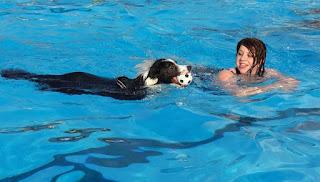Berenang Saat Hamil